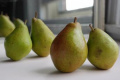 Pears - Magness